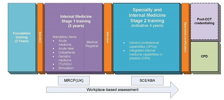 Model for physician training - group 1 specialties (dual CCT)